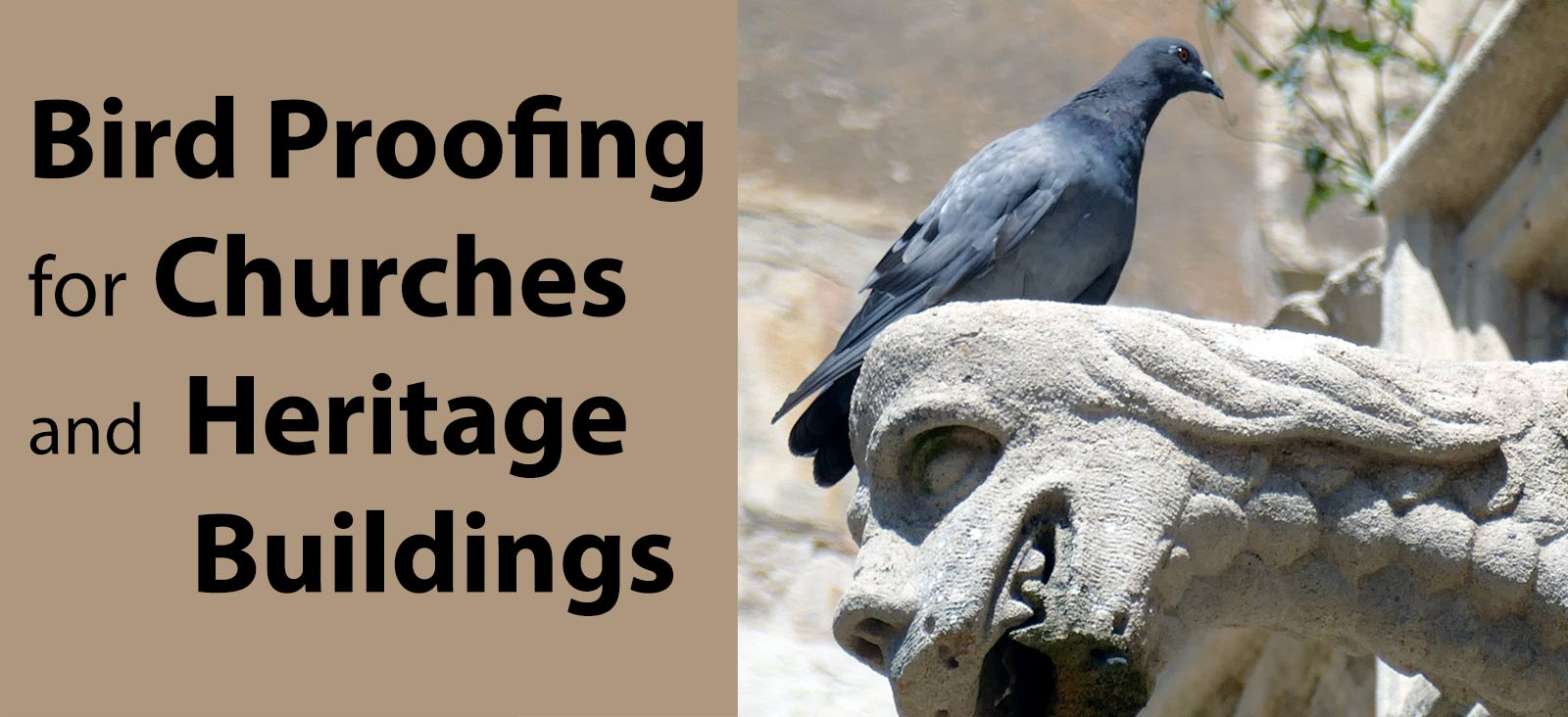 Bird-proofing Churches and historic buildings